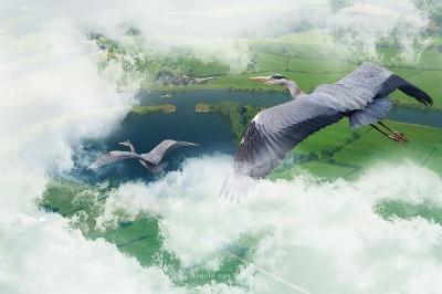 Lucht (vogelperspectief)